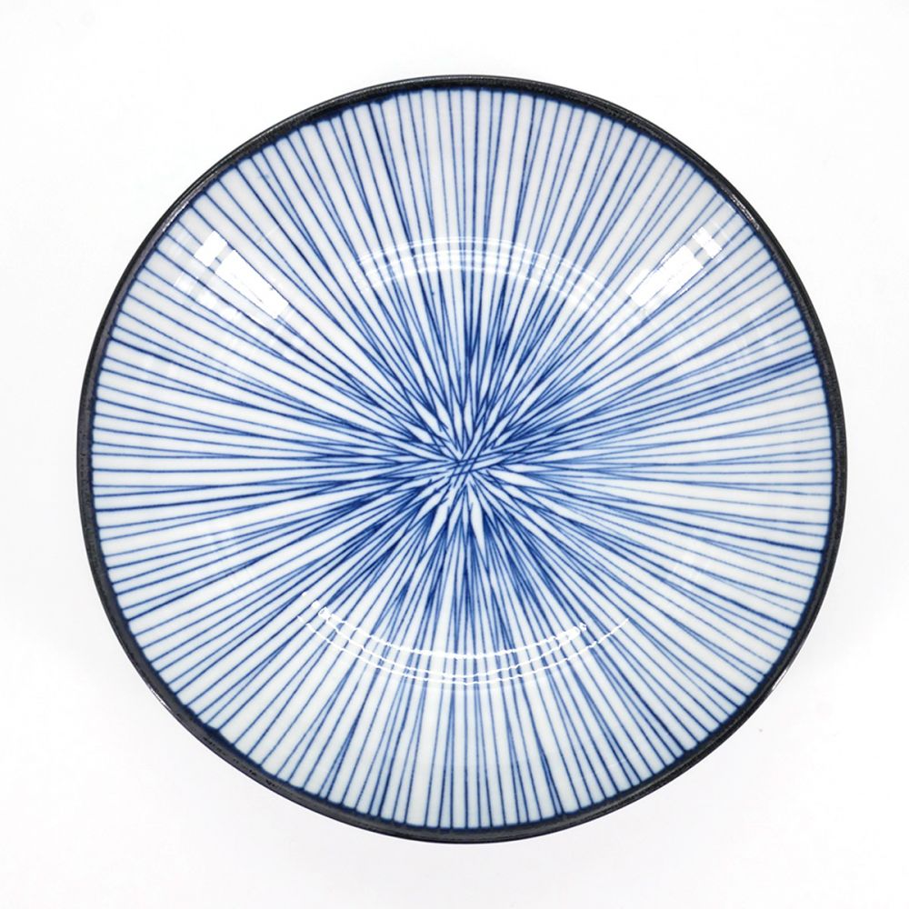 Japanese plate, LINE, blue lines