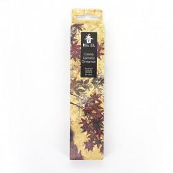 Confezione da 20 bastoncini di incenso, KOH DO - CANNELLA, Cannella e Borneol