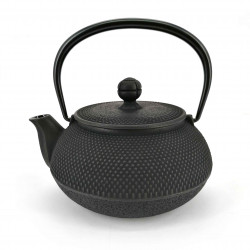 Japanese teapot cast iron, IWACHU ARARE, black