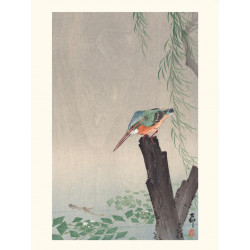 Japanese print, Kingfisher, Ohara Koson