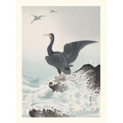 Japanese print, Cormorant on a rock, Ohara Koson