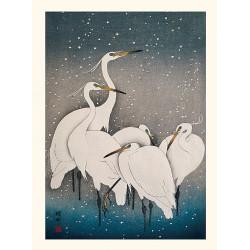 Japanese print, Little Egrets, Ohara Koson