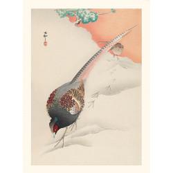 Japanese print, Egret, Ohara Koson