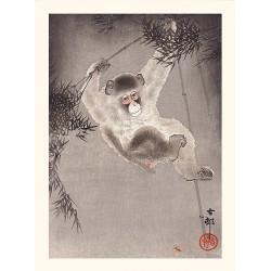 Japanese print, Perched monkey, Ohara Koson