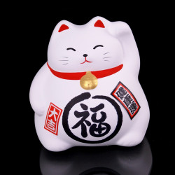 lucky charm cat