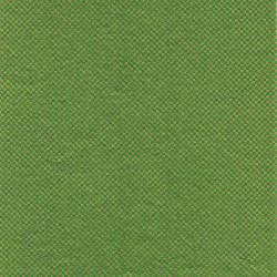 papier japonais Yusen Washi designed By Taniguchi Kyoto Japan 8012GR